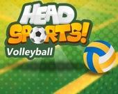Головы в спорте: волейбол