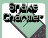 Заклинатель змей