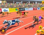 Симулятор собачьих бегов 2020