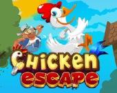 Побег курицы