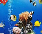 Найди отличия: Подводный мир
