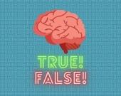 Правда или ложь - Викторина