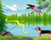 Охота на птиц из лука
