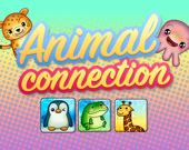 Соедини Животных