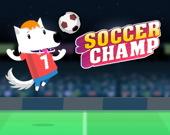 Футбольный чемпион