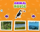Угадай дом животного