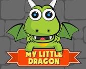 Мой маленький дракон