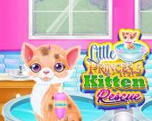 Спасение кошечки-принцессы