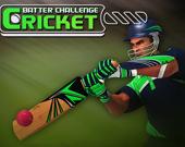 Соревнования по крикету