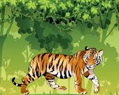 Раскраска: Рассерженный тигр