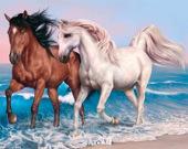 Животный пазл: Лошади