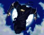 Ниндзя-защитник