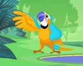 Раскраска: Попугай