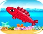 Рыбное безумие