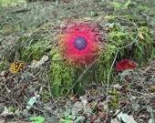 Загадки осеннего леса 2