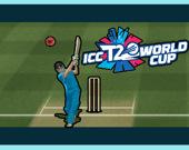 Крикет - Кубок мира 2020
