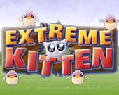 Котёнок-Экстремал