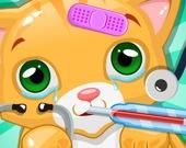 Ветеринар: Лечение маленьких котят