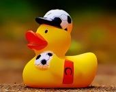Желтая утка - Пазл