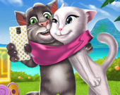 Селфи котят