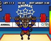 Олимпиада животных: Тяжёлая атлетика
