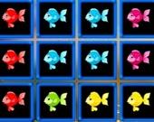 1010 Рыбных блоков