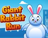 Бегущий кролик-гигант