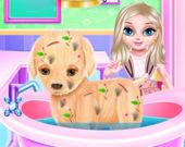 Малышка Эльза: Оперируем щенка