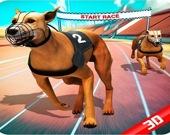 Собачьи бега 2020