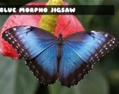 Синяя бабочка Морфо - Пазл
