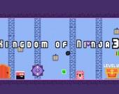 Королевство ниндзя 3