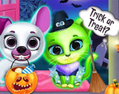 Страшный макияж в салоне домашних животных на Хэллоуин