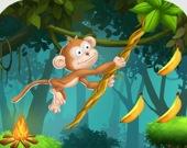 Веревки для обезьянки