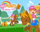 Мой пони: Моя маленькая гонка