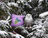 Зимняя страна чудес Лесные приключения