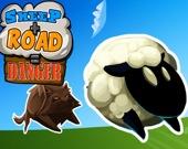 Овцы + дорога = Опасность