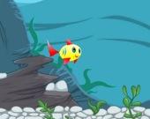 Самая счастливая рыба