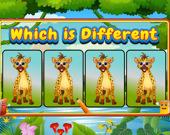 Чем отличаются животные?