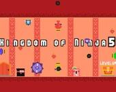 Королевство ниндзя 5