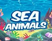 Морские животные HD
