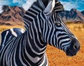 Снайпер - охота на зебру