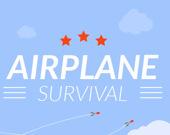 Выжить на самолете