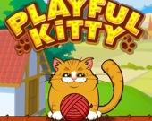 Игривый котик
