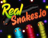Настоящие змейки