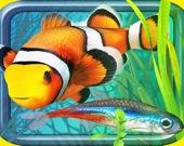 Рыбная ферма - Аквариум