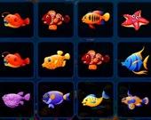 Подбери рыб