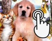 Кликер домашних животных
