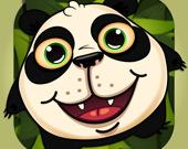 Панда-попрыгушка
