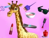 Модная парикмахерская для животных