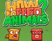 Как накормить животных
